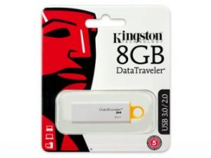 Kingston 8GB DataTraveler G4