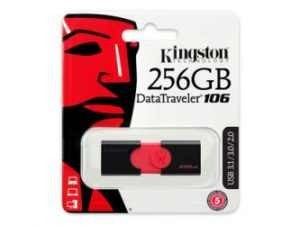 Kingston 256GB DataTraveler 106